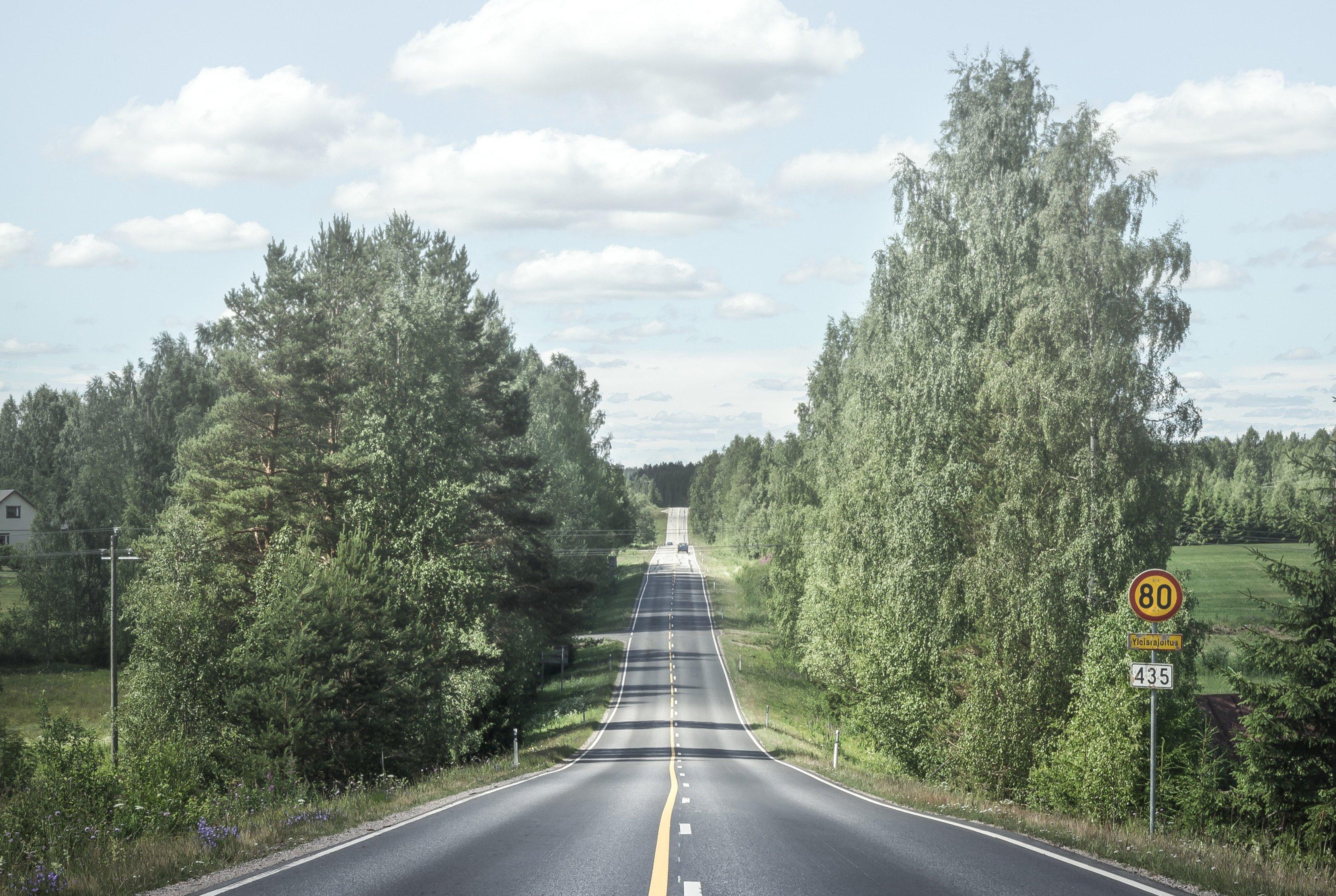 Maantie puiden ja peltojen keskellä.