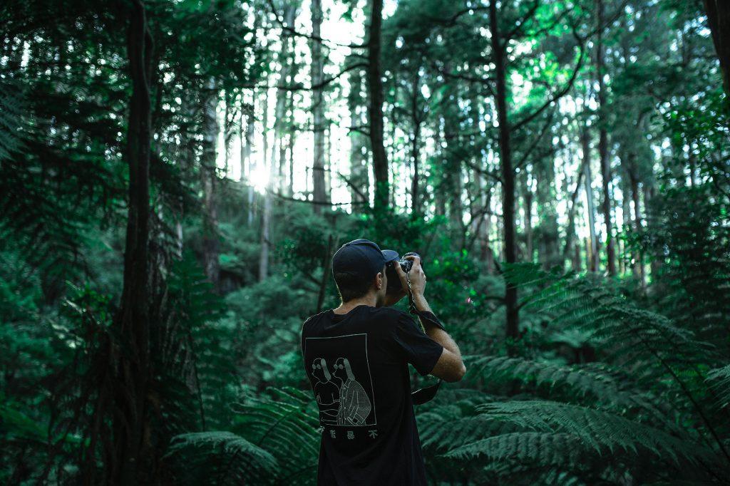 Ihminen valokuvaamassa metsässä.