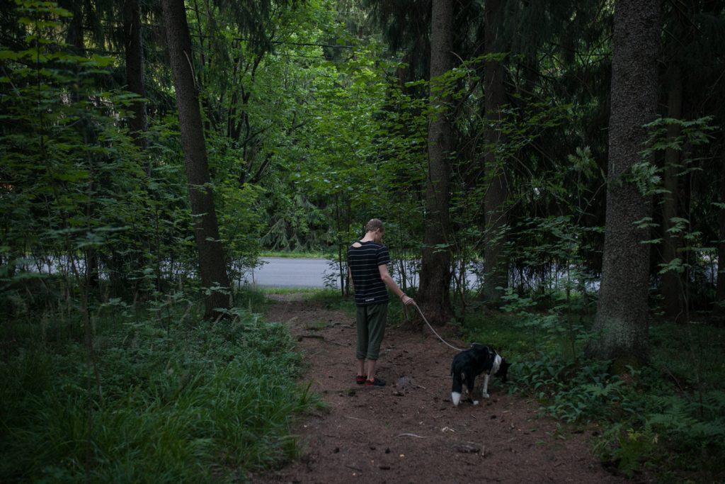 Mies ja koira kävelyllä metsässä
