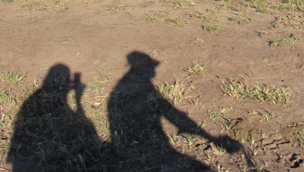 Kahden ihmisen varjot kuivaa vilelymaata vasten