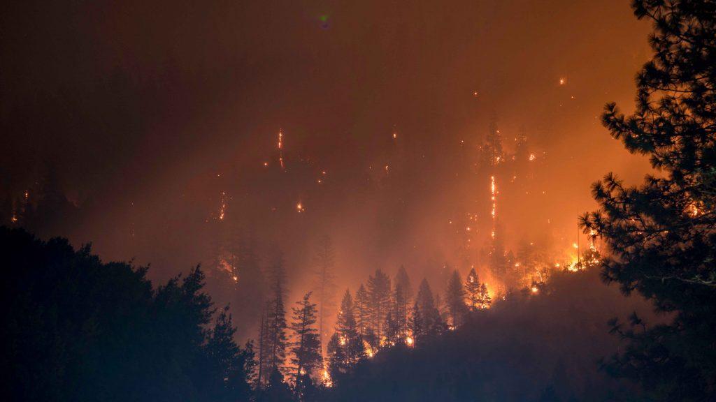 Suuri metsäpalo