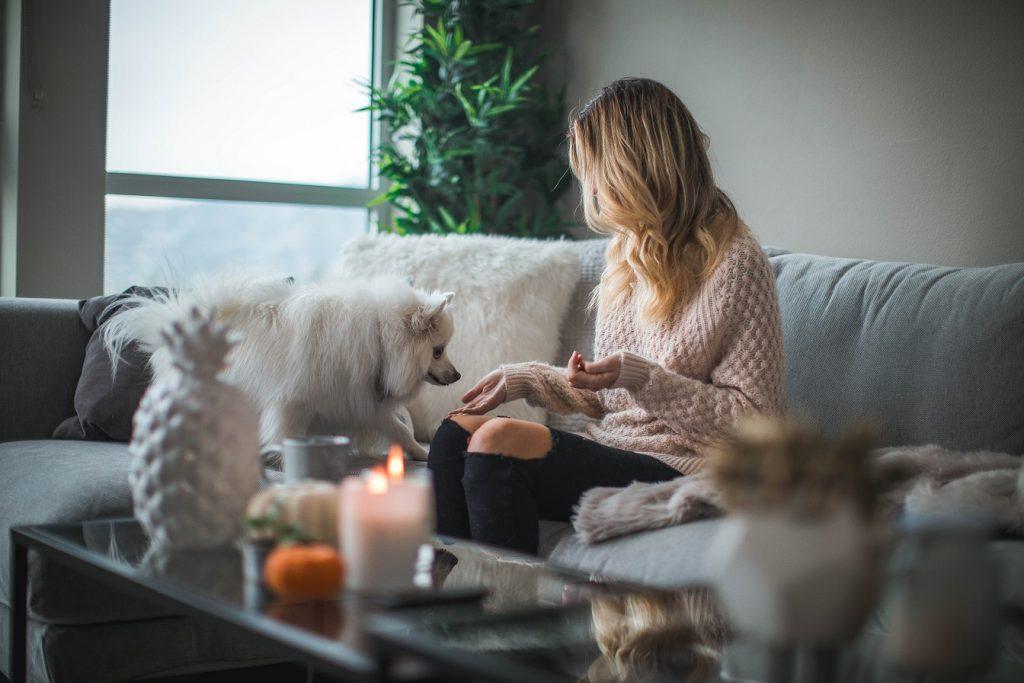 Henkilö vaaleasävyisellä sohvalla valkean pörröisen koiran kanssa kynttilänvalossa.