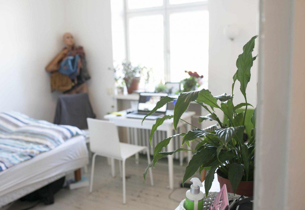 Vaaleasävyinen huone, jossa viherkasveja ja paljon valoa