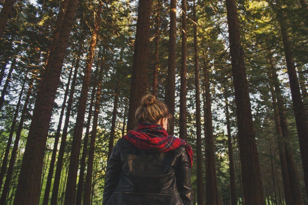 Henkilö yksin metsässä.