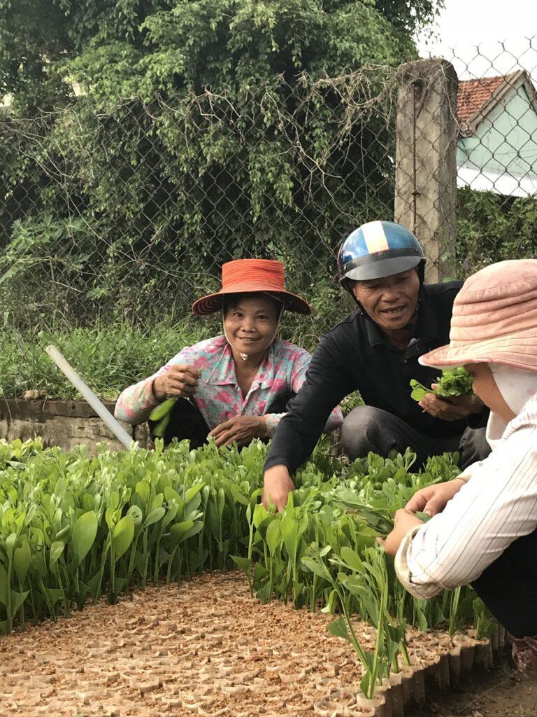 Ihmisiä taimitarhalla Vietnamissa
