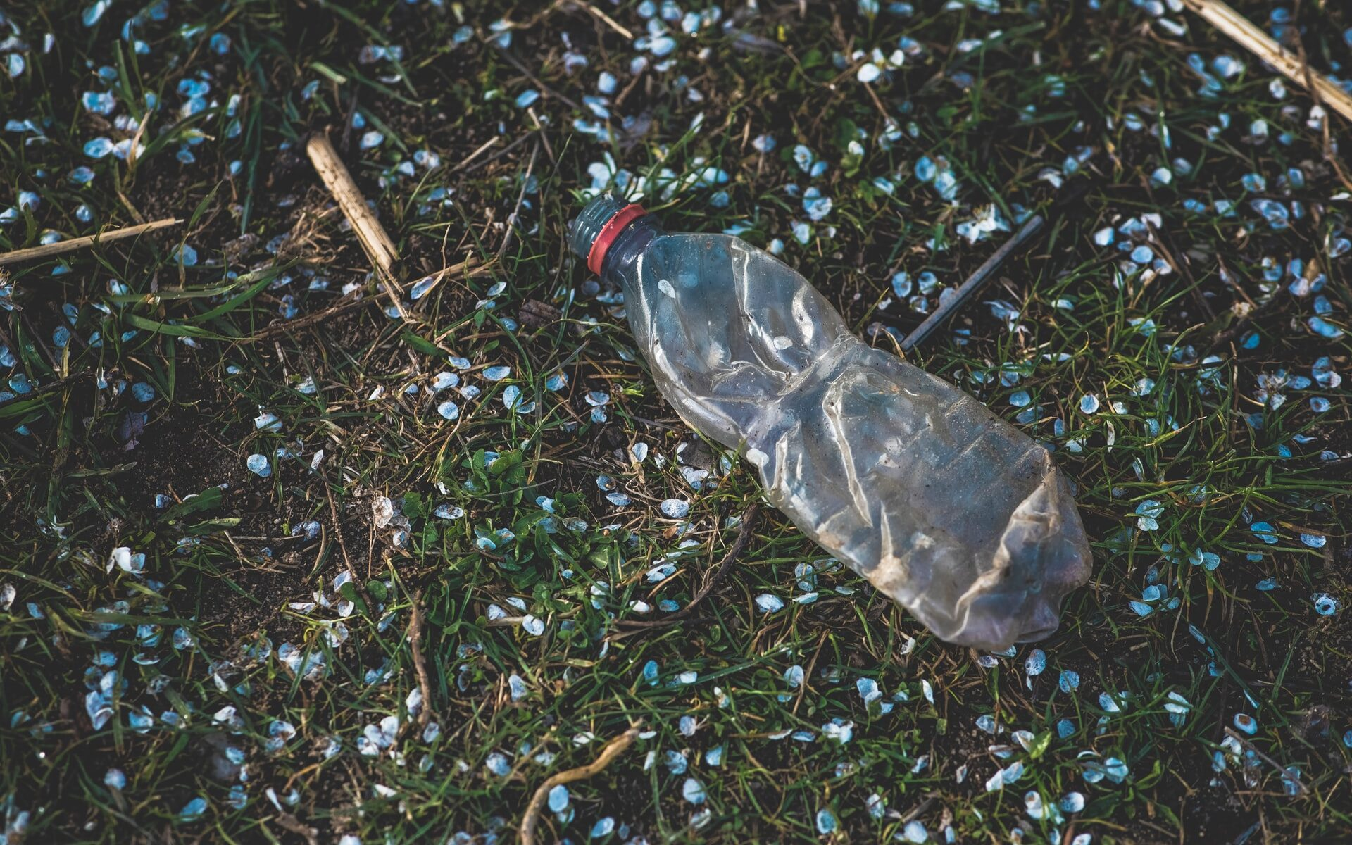 Likainen ruttaantunut muovipullo nurmikolla, jolla on myös valkoisia hitusia.